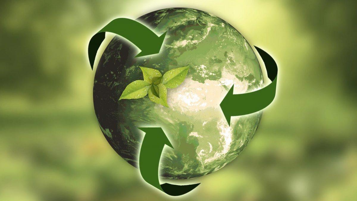 CUBIC ökologie